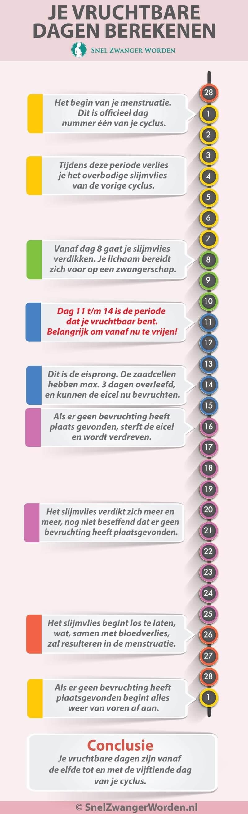 Ovulatietest Doen Bereken Je Vruchtbare Dagen Via Online Calculator